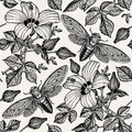 Hibiscus cicadas. Flowers mallow insects fauna. Seamless textile background. Drawing engraving. Freehand realistic. Royalty Free Stock Photo