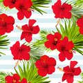 Hibiscus flower vector seamless pattern on a blue stripes background flowered tropical texture