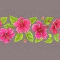 Hibiscus horizontal pattern