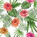 Hibiscus orange red purple seamless white background pattern Royalty Free Stock Photo