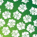 Hibiscus Pattern - Green Royalty Free Stock Photo