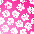 Hibiscus Pattern - Pink Royalty Free Stock Photo