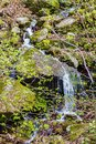 Hidden Cascading Waterfall in the Blue Ridge Mountains Royalty Free Stock Photo