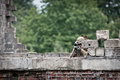 Hidden sniper aims his target from the top of the old building Royalty Free Stock Photo