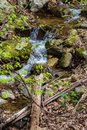 Hidden Waterfall in the Blue Ridge Mountains Royalty Free Stock Photo