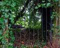 Hidden wrought iron gate to a secret garden, Welwyn Village, England Royalty Free Stock Photo