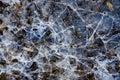 Hielo de agua agrietado en fondo congelado del invierno del pantano Fotografía de archivo libre de regalías