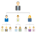 Hierarchical tree diagram business structure pyramid traditional Royalty Free Stock Photo