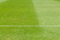 Hierba verde campo del fútbol fooball Imagenes de archivo