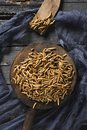 Edible fried worms Royalty Free Stock Photo