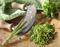 Chopping fresh chives Royalty Free Stock Photo