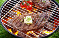 Steak grilling over a glowing fire Royalty Free Stock Photo