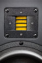 High frequency loudspeaker yellow tweeter closeup Stock Photos