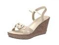 High heel woman shoe Stock Photo