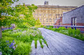 High line park new york circa may the circa may the is a popular linear built on the elevated train tracks Royalty Free Stock Images