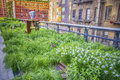 High line park new york circa may the circa may the is a popular linear built on the elevated train tracks Royalty Free Stock Photo