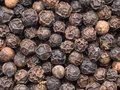 High magnification black pepper corn macro Royalty Free Stock Photos