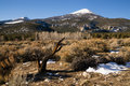 High mountain peak great basin region nevada landscape winter in national park Stock Photography