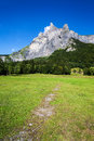 High mountain peak and green meadow sixt fer a cheval france Stock Photo