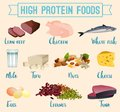 High protein foods set