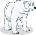 High Quality Polar Bear Vector...