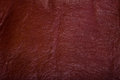 High resolution leather brown texture Stock Photos