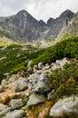 Vysoké Tatry, pohľad na hory