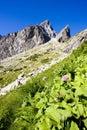 Vysoké Tatry, Hory