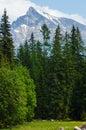 Vysoké Tatry, jarný pohľad