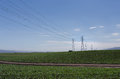High tension electrical wires over farm land in salinas valley california Royalty Free Stock Images