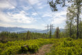 High tension tower a in beautiful surroundings in hardanger norway Royalty Free Stock Photo