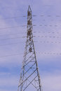High voltage electrical tower against blue sky background Royalty Free Stock Photo