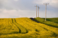 High voltage electricity poles Royalty Free Stock Photo