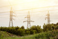 High voltage lines and power pylons in a flat and green agricultural landscape on a sunny day