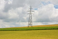 High voltage post high voltage tower on golden field and blue s sky Stock Images