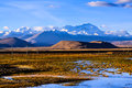 Highland with snow mountain near old tingri town tibet Royalty Free Stock Images