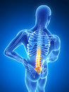 Highlighted lower spine d rendered illustration backache Royalty Free Stock Photography
