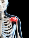 Highlighted shoulder joint Royalty Free Stock Photos