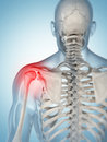 Highlighted shoulder joint d rendered illustration of a painful Royalty Free Stock Photography