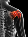 Highlighted shoulder joint d rendered illustration of a painful Royalty Free Stock Image
