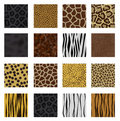 Highly detailed animal skin pack Stock Photography