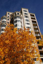 Highrise apartment with autumn leaves Stock Photography