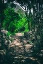 Hike on the ancient Inca Trail paved path to Machu Picchu. Peru. No people
