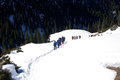 The hike team in snow outdoor activities xinjiang Royalty Free Stock Image