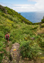 Hiker on azores hiking terceira island during summer Royalty Free Stock Images