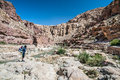 Hiker in desert admiring the scenery jordan wadi hasa Royalty Free Stock Image
