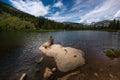 Hiker at Lost Lake Colorado Royalty Free Stock Photo