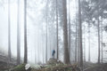 Hiker in misty forest Royalty Free Stock Photo