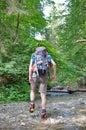 Hiker in Slovakian Paradise