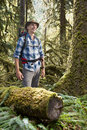 Hiker in temperate rainforest young standing a rain forest wearing a hat and a backpack surrounded by moss covered tree trunks Stock Images